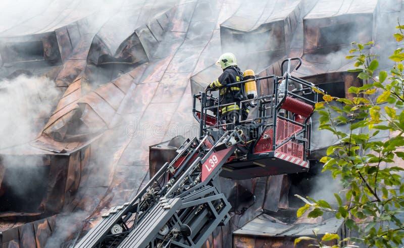 Πυροσβέστης στη σκάλα στοκ εικόνες