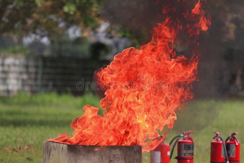 Πυροσβεστήρες στοκ εικόνες με δικαίωμα ελεύθερης χρήσης