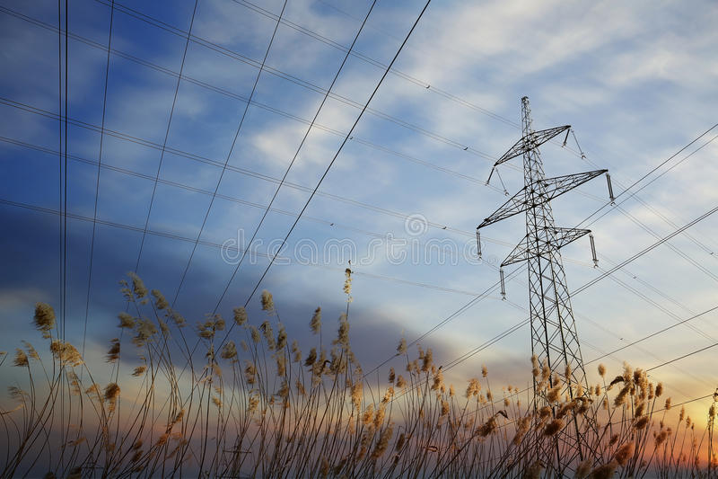 Πυλώνας και ηλεκτροφόρα καλώδια στο ηλιοβασίλεμα με τη χλόη στοκ φωτογραφία με δικαίωμα ελεύθερης χρήσης