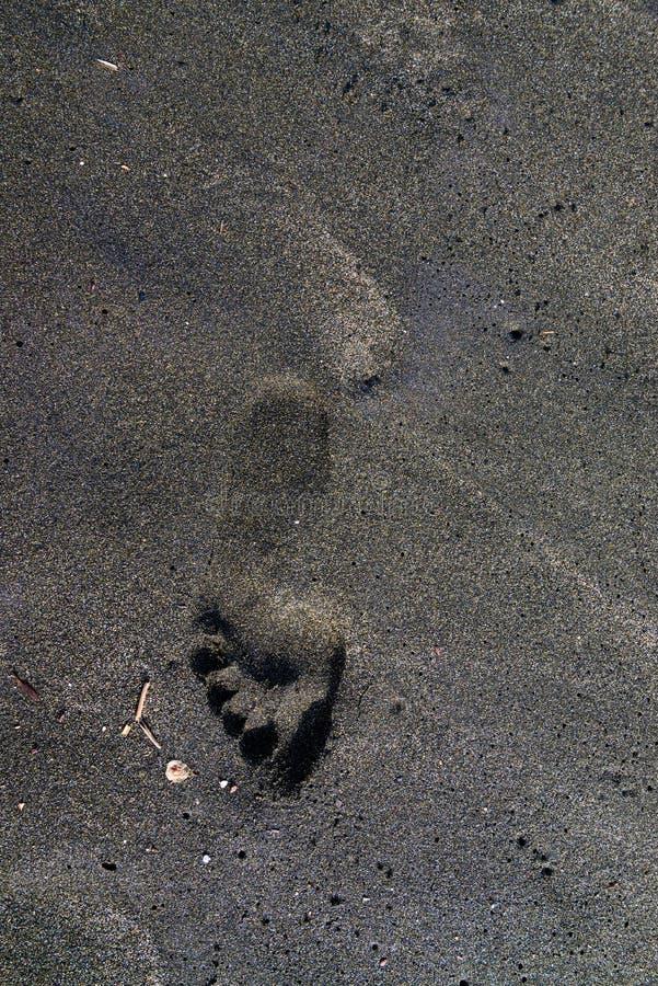 Πόδια ίχνους στην άμμο στοκ φωτογραφίες