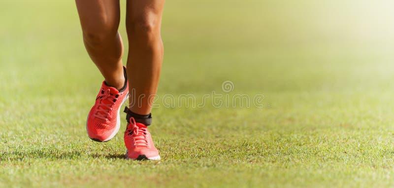 Πόδια αθλητών δρομέων που τρέχουν στη χλόη Θηλυκό φως του ήλιου ικανότητας που workout στοκ φωτογραφίες
