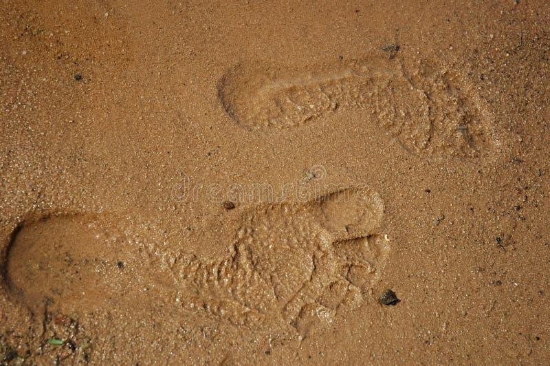 πόδια βημάτων Στοκ Φωτογραφίες