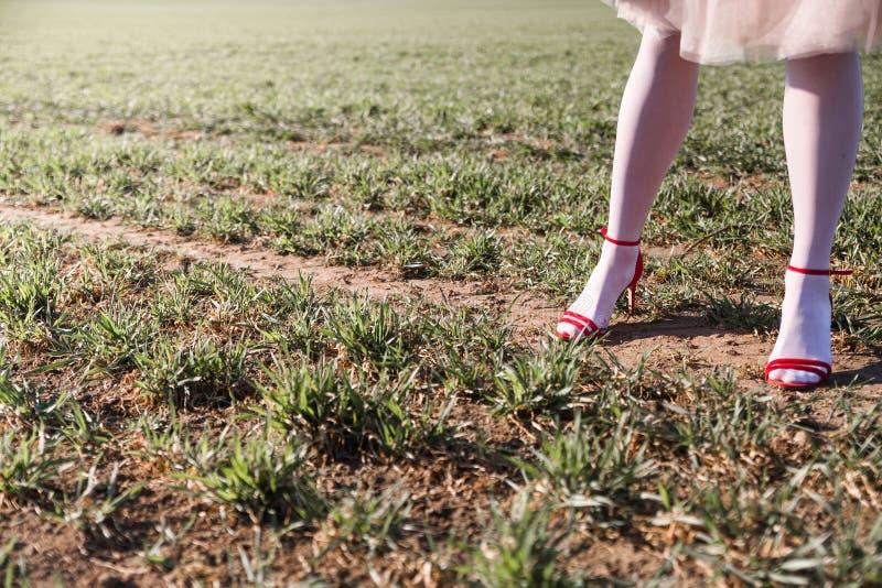 Πόδια γυναικών στα κόκκινα σανδάλια και το άσπρο pantyhose στοκ φωτογραφίες