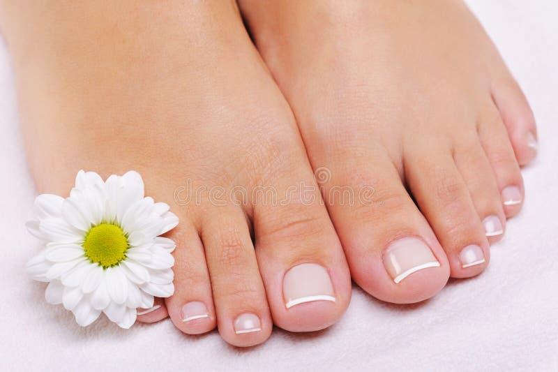 πόδια θηλυκού γαλλικού ped στοκ φωτογραφίες