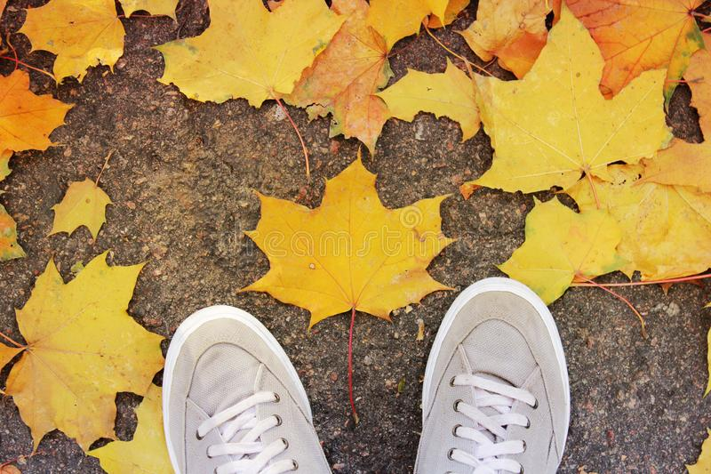 Πόδια και φύλλα στο έδαφος στοκ φωτογραφίες