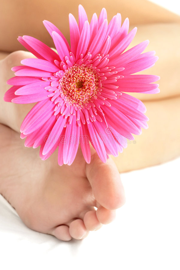 πόδια λουλουδιών στοκ εικόνες