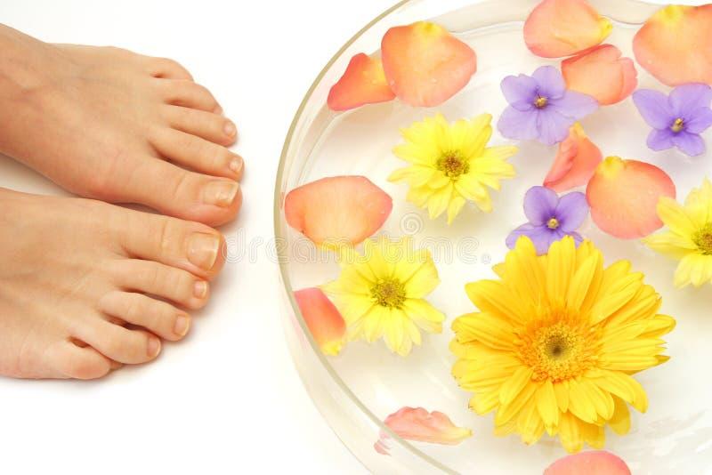 πόδια λουλουδιών στοκ εικόνες με δικαίωμα ελεύθερης χρήσης