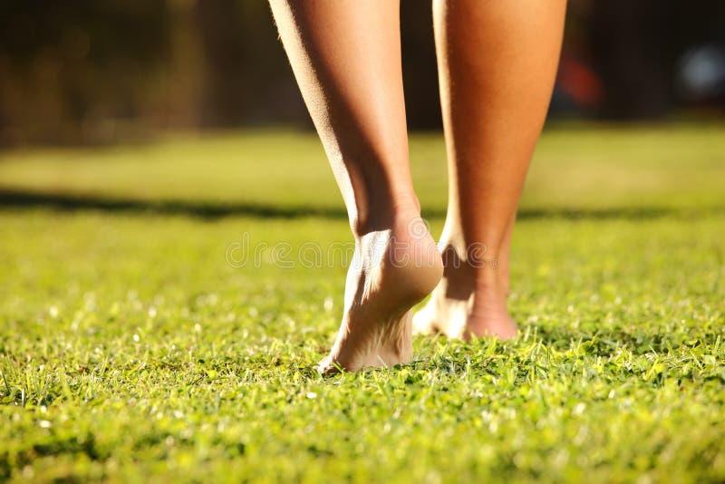πόδια χλόης στοκ φωτογραφία με δικαίωμα ελεύθερης χρήσης