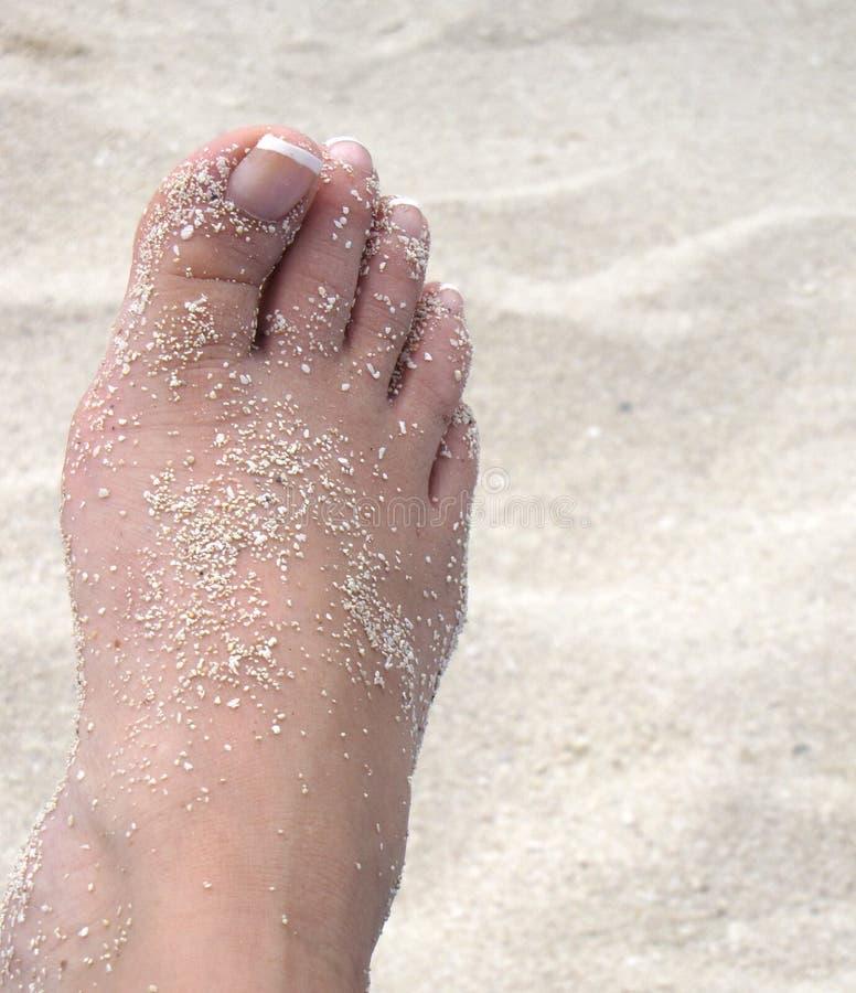 πόδι αμμώδες στοκ εικόνα με δικαίωμα ελεύθερης χρήσης