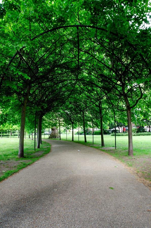 Πόλη/Αγγλία του Λονδίνου: Αλέα στο τετραγωνικό πάρκο του Russell στοκ φωτογραφία