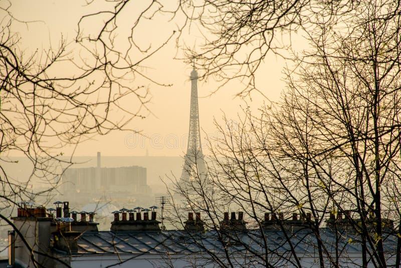 Πόλη της άποψης του Παρισιού με τον πύργο του Άιφελ και τις παρισινές στέγες στοκ φωτογραφία με δικαίωμα ελεύθερης χρήσης