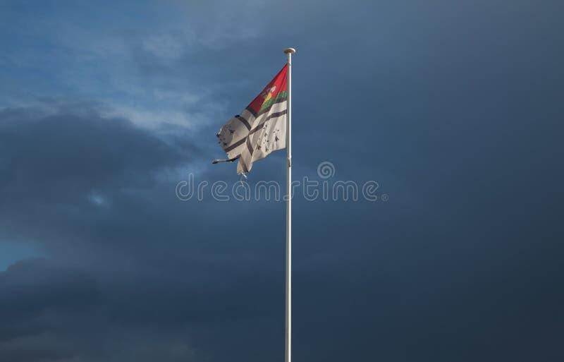 Πόλη της Νάντης του υφαντικού κυματισμού υφάσματος υφασμάτων σημαιών της Γαλλίας στοκ εικόνα