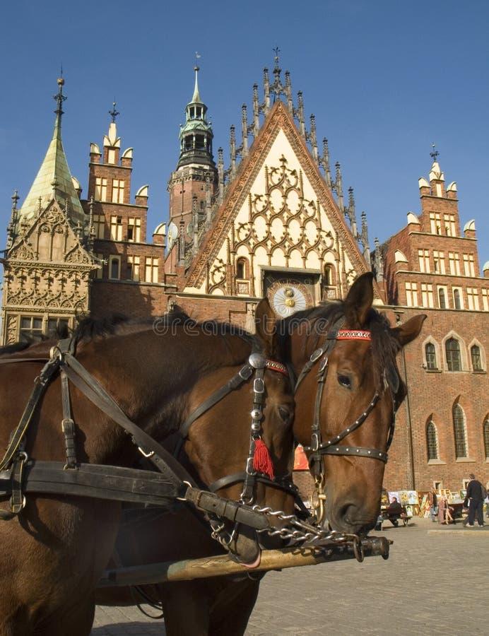 πόλη της Πολωνίας αιθουσών wroclaw στοκ φωτογραφία