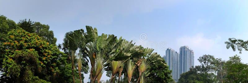 Πόλη Χο Τσι Μινχ, Βιετνάμ, άποψη στα σύγχρονα κτήρια και το πάρκο στοκ εικόνες με δικαίωμα ελεύθερης χρήσης