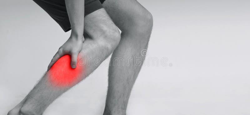 Πόνος ποδιών μόσχων, άτομο που κρατά τον επώδυνο και επίπονο μυ στοκ εικόνες