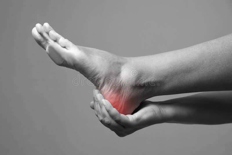 Πόνος στο πόδι Μασάζ των θηλυκών ποδιών Πόνος στο ανθρώπινο σώμα σε ένα γκρίζο υπόβαθρο στοκ εικόνα