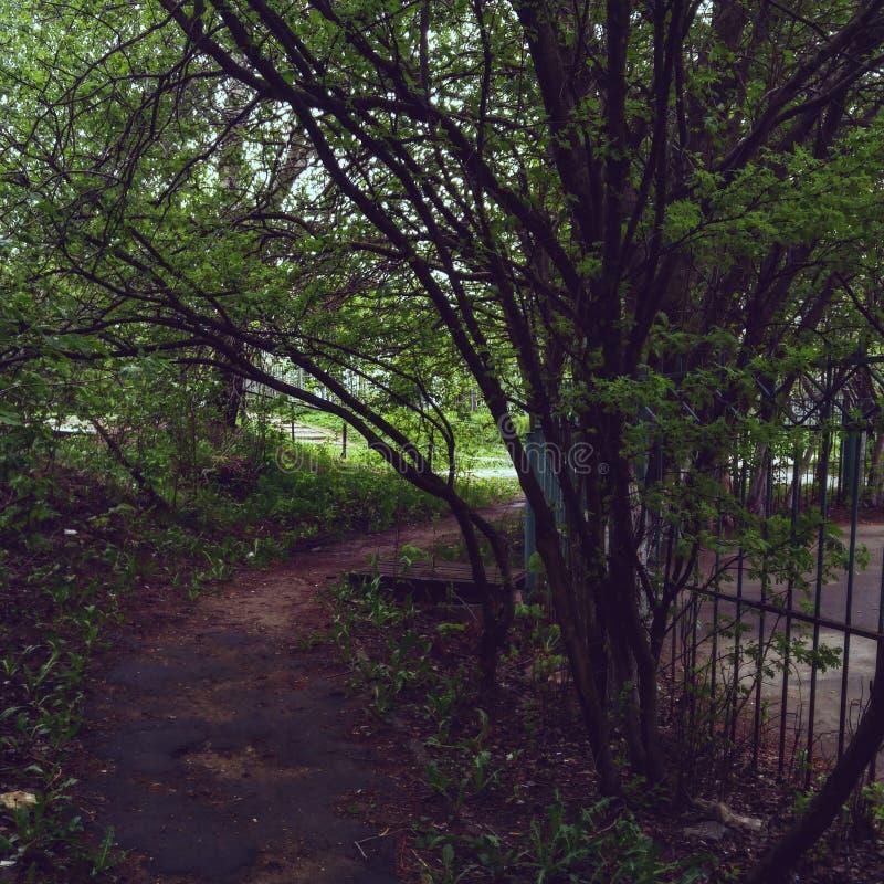 Πόλης τοπίο στοκ εικόνες με δικαίωμα ελεύθερης χρήσης
