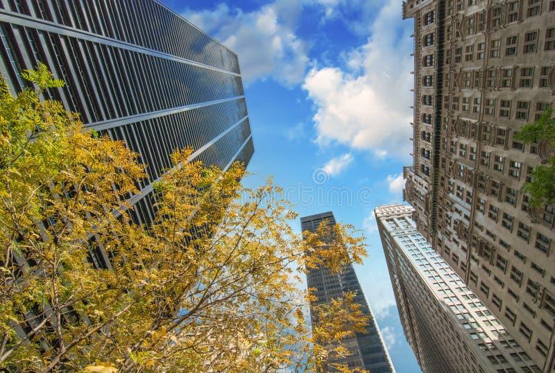 Πόλη της Νέας Υόρκης. Ανοδική άποψη των κτηρίων του Μανχάταν με τα δέντρα στοκ φωτογραφίες