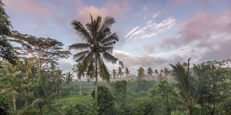 Πόλη του Μπαλί των Θεών στοκ φωτογραφία με δικαίωμα ελεύθερης χρήσης