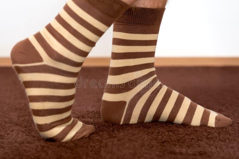 Πόδια ατόμων στις κάλτσες στοκ εικόνα