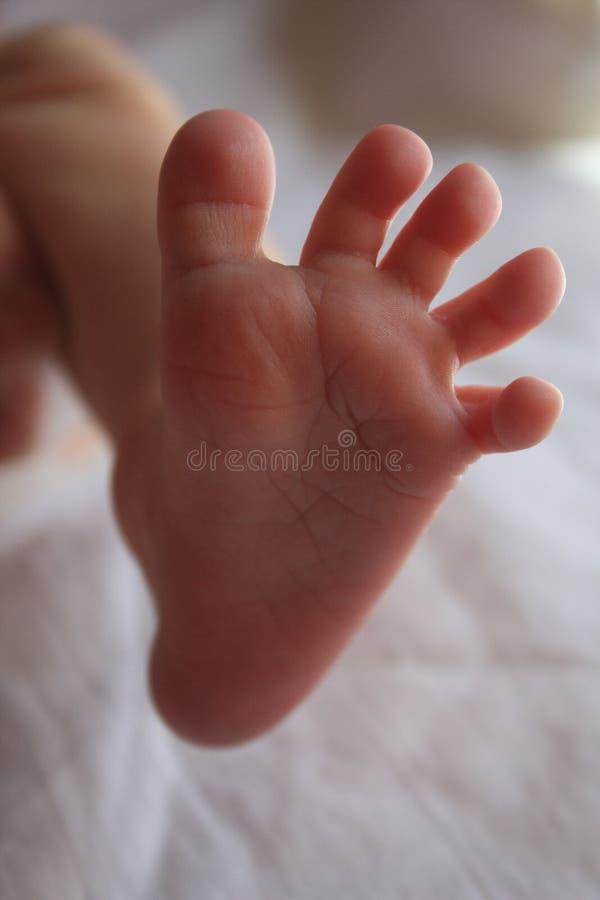 Πόδι παιδιών στοκ εικόνες με δικαίωμα ελεύθερης χρήσης