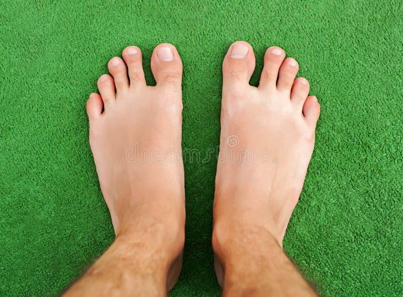 Πόδι στην πράσινη χλόη στοκ εικόνα