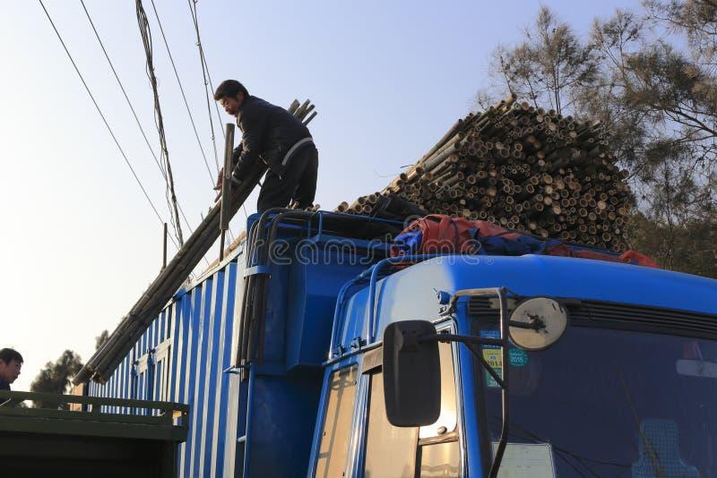 Πόλος μπαμπού κίνησης εργαζομένων στο φορτηγό στοκ φωτογραφία με δικαίωμα ελεύθερης χρήσης