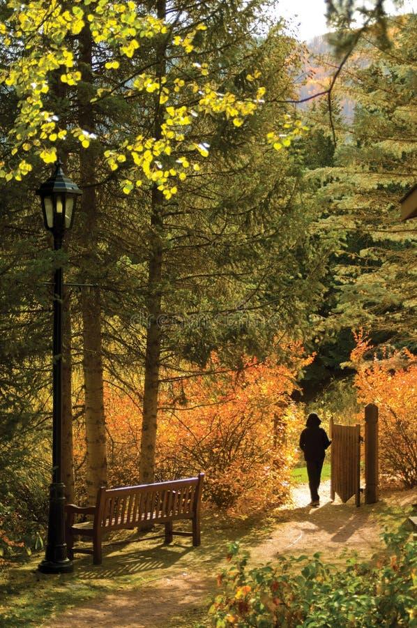 πύλη φθινοπώρου στοκ εικόνα