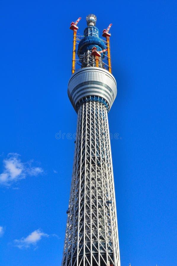 Πύργος δέντρων ουρανού του Τόκιο στο θάλαμο sumida, Τόκιο, Ιαπωνία στοκ εικόνες με δικαίωμα ελεύθερης χρήσης