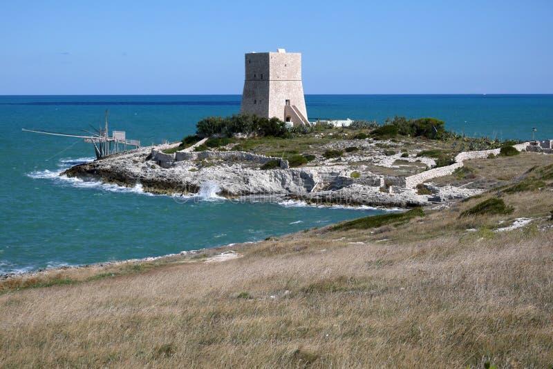 Πύργος και trabucco κοντά σε Vieste, Gargano στοκ φωτογραφίες με δικαίωμα ελεύθερης χρήσης