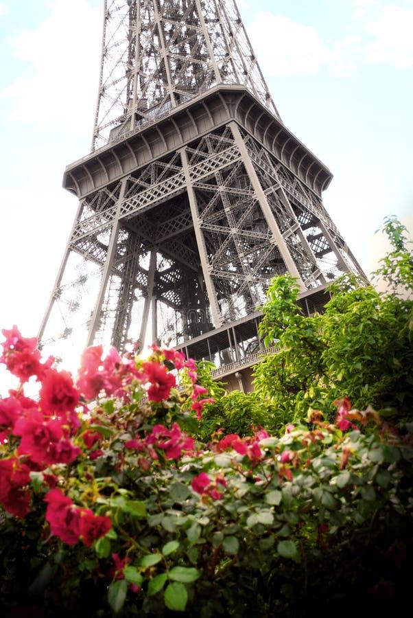 Πύργος του Άιφελ στο Παρίσι επάνω στοκ φωτογραφία με δικαίωμα ελεύθερης χρήσης