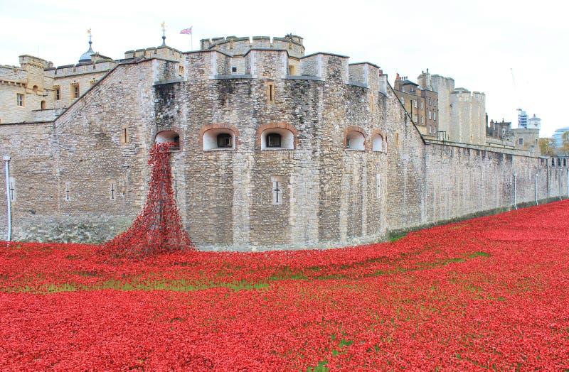 Πύργος του Λονδίνου με τις παπαρούνες στοκ φωτογραφία με δικαίωμα ελεύθερης χρήσης