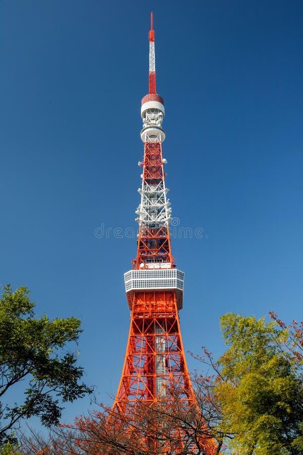 Πύργος του Τόκιο με το μπλε ουρανό στοκ εικόνες με δικαίωμα ελεύθερης χρήσης