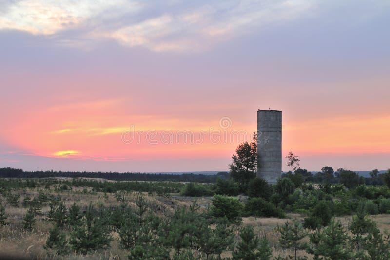 Πύργος τούβλου στο υπόβαθρο ενός όμορφου ηλιοβασιλέματος Τοπίο στεπών Donbass βραδιού Νέα πεύκα στο πρώτο πλάνο στοκ εικόνες