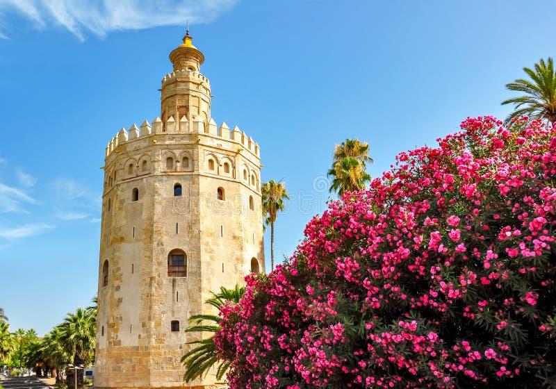 Πύργος Gold Torre del Oro στη Σεβίλη, Ισπανία στοκ φωτογραφία με δικαίωμα ελεύθερης χρήσης