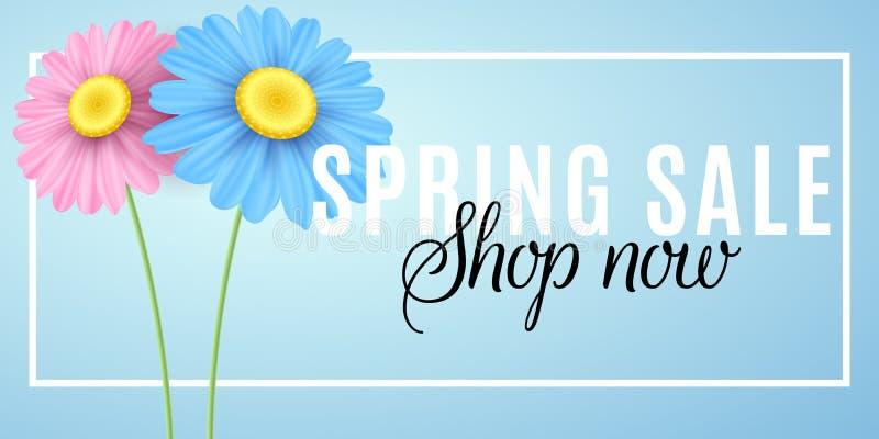 Πώληση άνοιξη Εποχιακές αγορές Διαφημιστικό έμβλημα Ιστού Ρόδινα και μπλε chamomile λουλούδια στο πλαίσιο σε ένα μπλε υπόβαθρο Δι διανυσματική απεικόνιση
