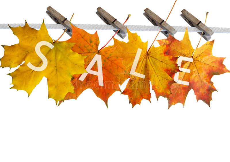 πώληση φύλλων φθινοπώρου στοκ εικόνα
