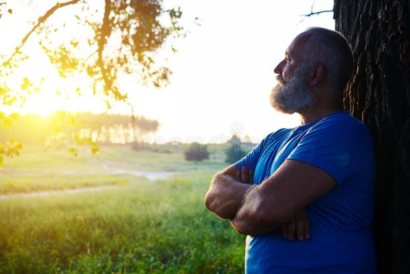 Πλάγια όψη του όμορφου ηλικίας ατόμου κοντά στο δέντρο που εξετάζει τους ήλιους στοκ φωτογραφία