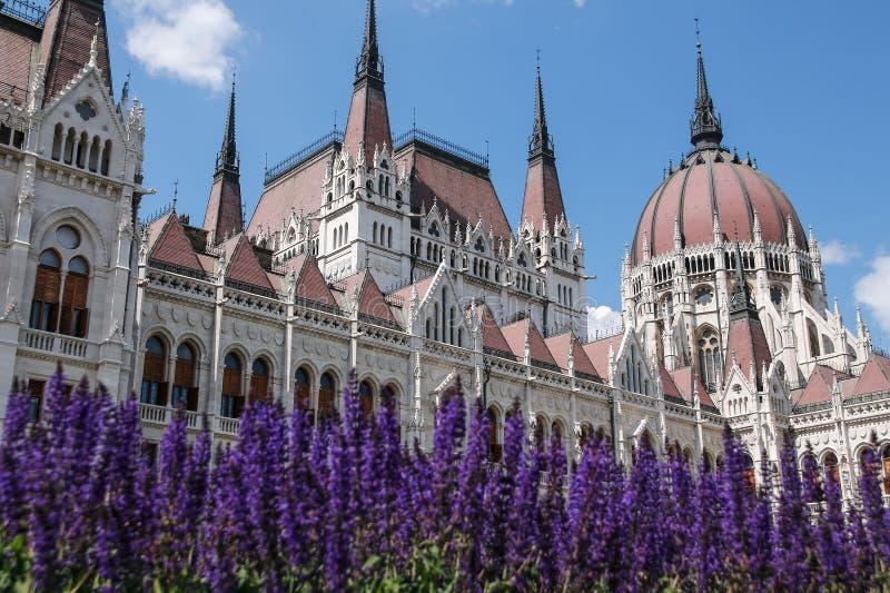 πλάνο των Κοινοβουλίων της Ουγγαρίας φίλτρων οικοδόμησης της Βουδαπέστης cpl αρχιτεκτονικές απεικονισμένες λεωφόρος αγορές γυαλιο στοκ εικόνες