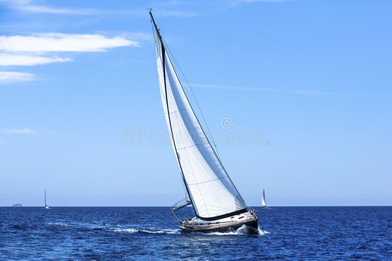 Πλέοντας γιοτ σκαφών με τα άσπρα πανιά στην ανοικτή θάλασσα πολυτέλεια στοκ φωτογραφία