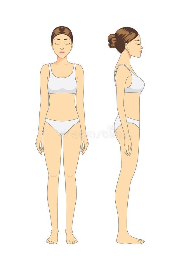 Πλήρες πρότυπο γυναικών σωμάτων στην άσπρη στάση εσώρουχων διανυσματική απεικόνιση