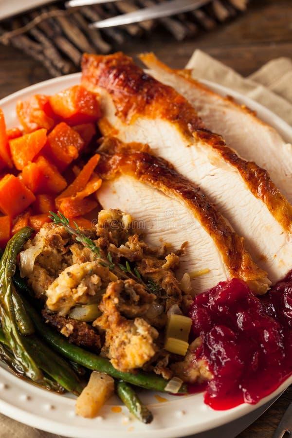 Πλήρες σπιτικό γεύμα ημέρας των ευχαριστιών στοκ φωτογραφία με δικαίωμα ελεύθερης χρήσης