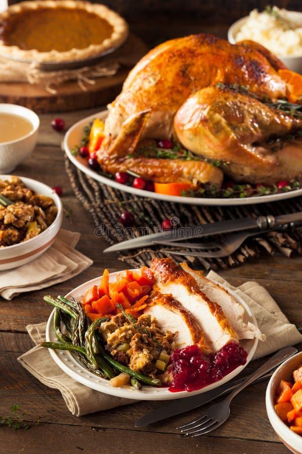 Πλήρες σπιτικό γεύμα ημέρας των ευχαριστιών στοκ εικόνες με δικαίωμα ελεύθερης χρήσης