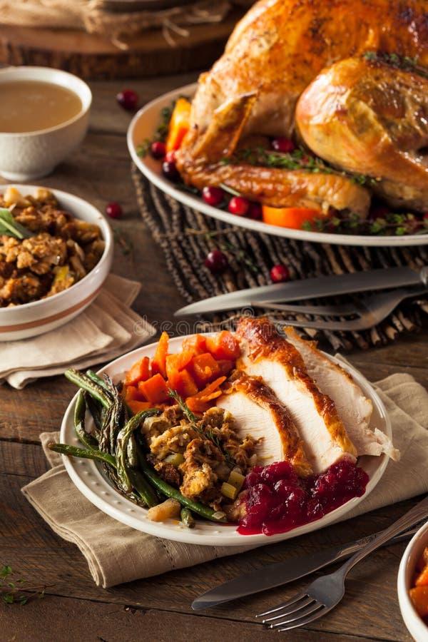 Πλήρες σπιτικό γεύμα ημέρας των ευχαριστιών στοκ εικόνα με δικαίωμα ελεύθερης χρήσης