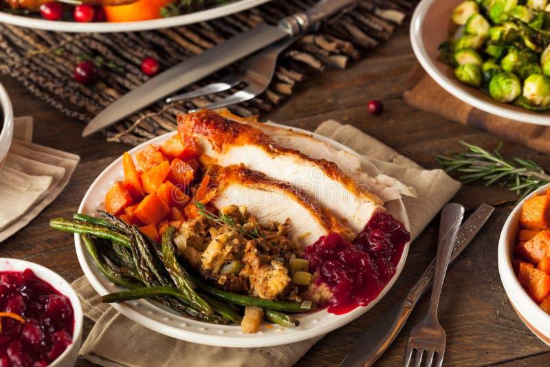 Πλήρες σπιτικό γεύμα ημέρας των ευχαριστιών στοκ εικόνα