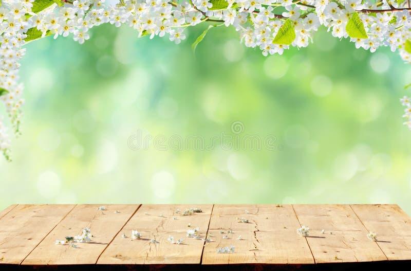 πλήρης άνοιξη λιβαδιών πικραλίδων ανασκόπησης κίτρινη στοκ φωτογραφία