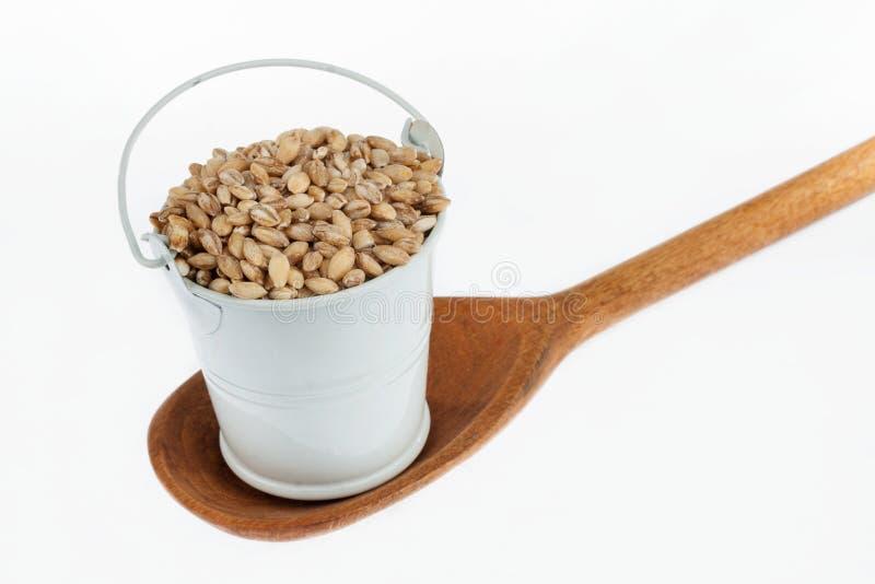 Πλήρης κάδος των στάσεων σιταριών κριθαριού μαργαριταριών σε ένα ξύλινο κουτάλι στοκ φωτογραφία