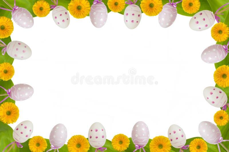 Πλήρη αυγά και gerbera πλαισίων στοκ φωτογραφία με δικαίωμα ελεύθερης χρήσης