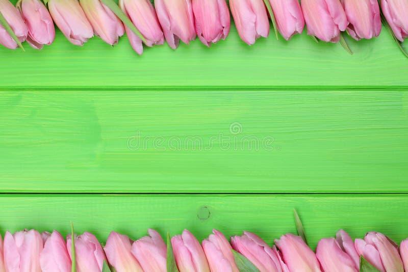 Πλαίσιο από τα λουλούδια τουλιπών την άνοιξη ή ημέρα μητέρων με το copyspac στοκ εικόνες