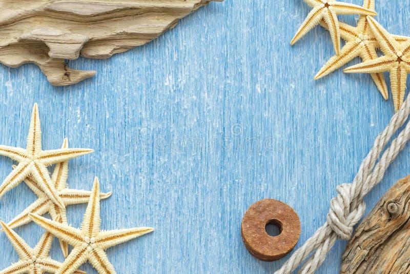 Πλαίσιο κοχυλιών θάλασσας στοκ εικόνα με δικαίωμα ελεύθερης χρήσης